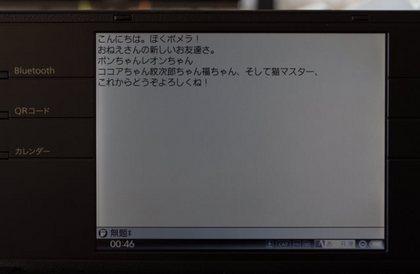 IMGP6134 (640x419).jpg
